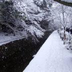 朗読劇「雪待月~音で感じる文豪の物語~」【公演日11月11日(日)】